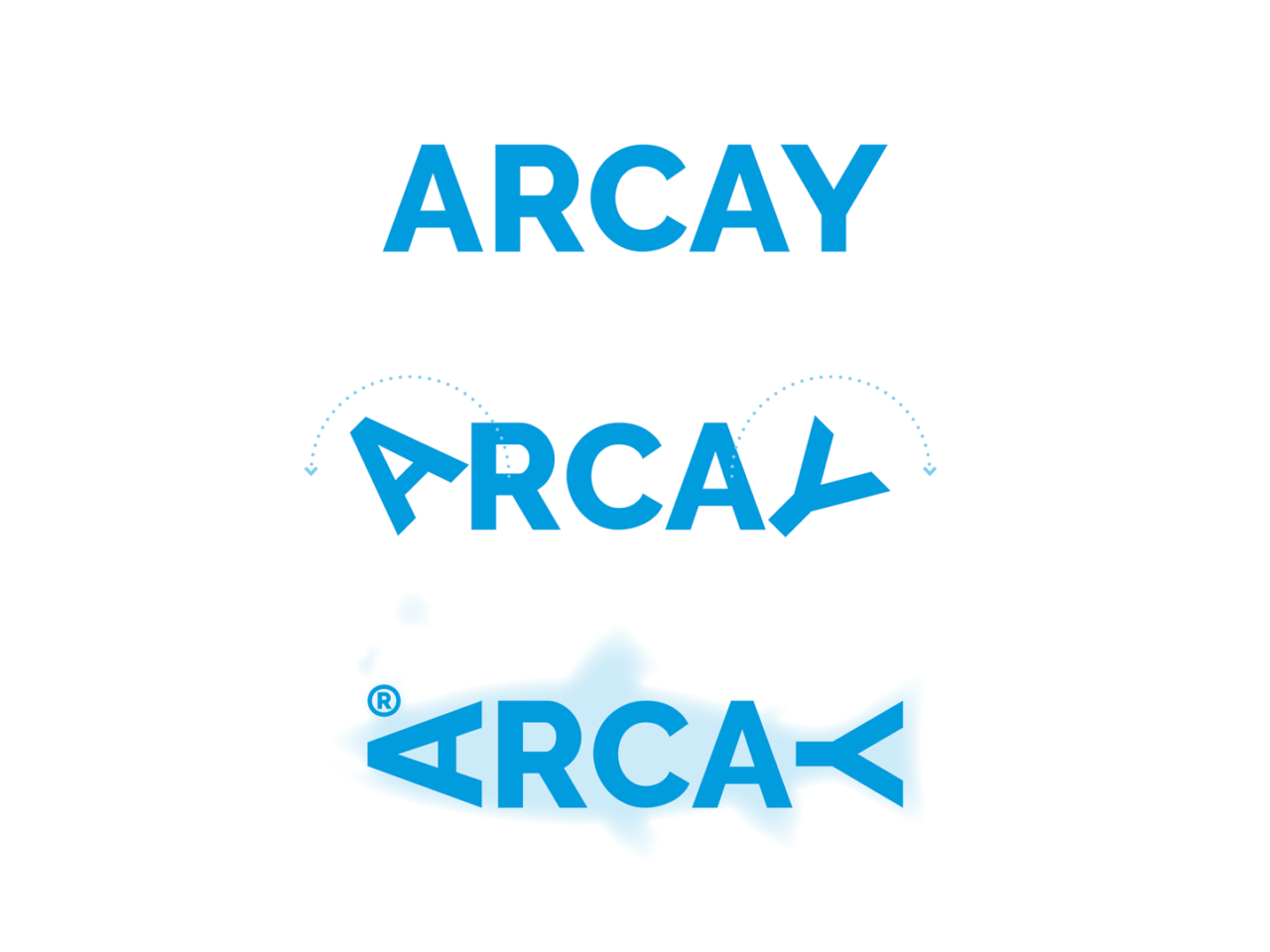 Identidade corporativa de Arcay Fishing 2